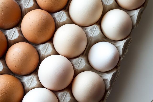plato vajec